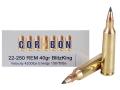 Cor-Bon Self-Defense Ammunition 22-250 Remington 40 Grain Sierra BlitzKing Polymer Tip Box of 20