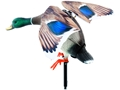 Lucky Duck Rapid Flyer Motion Duck Decoy Combo