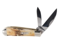 Case 5526 Sway Back Jack Folding Knife 2-Blade Stainless Steel Blade Stag Handle