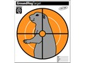 Hoppe&#39;s Ground Hog Target 10-1/2&quot; x 12&quot; Package of 20