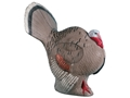 Product detail of Rinehart Strutting Turkey 3-D Foam Archery Target