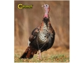 Caldwell &quot;The Natural Series&quot; Turkey Target