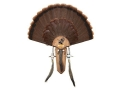 H.S. Strut Three Beard Turkey Mounting Kit