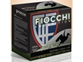 Fiocchi Speed Steel Ammunition 12 Gauge 3&quot; 1-1/8 oz BB Non-Toxic Steel Shot Box of 25