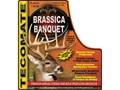 Tecomate Brassica Banquet Annual Food Plot Seed 5 lb