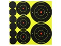 Birchwood Casey Shoot-N-C Target 72-1&quot;, 36-2&quot; and 24-3&quot; Round Assortment Package of 10