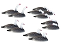 Hard Core Touchdown Goose Shell Decoy Pack of 12