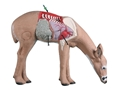 Rinehart Anatomy Deer 3-D Foam Archery Target