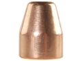 Product detail of Rainier LeadSafe Bullets 45 Caliber (451 Diameter) 200 Grain Plated Flat Nose