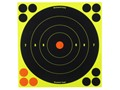 "Birchwood Casey Shoot-N-C Target 8"" Bullseye Package of 30 with 120 Pasters"