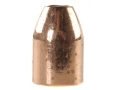 Rainier LeadSafe Bullets 50 Caliber (500 Diameter) 335 Grain Plated Hollow Point