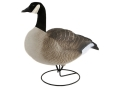 Product detail of Dakota Decoys X-Treme Full Body Canada Goose Decoys Actives Pack of 6