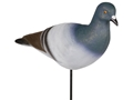 Tanglefree Pro Series Pigeon Decoy Pack of 12