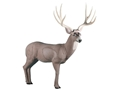 Rinehart Mule Deer 3-D Foam Archery Target