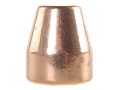 Rainier LeadSafe Bullets 45 Caliber (451 Diameter) 185 Grain Plated Flat Nose Box of 500 (Bulk Packaged)