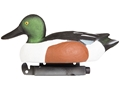 Tanglefree Pro Series Duck Decoy Weighted Keel Northern Shoveler Duck Decoy Pack of 6