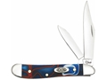 Case Patriot Peanut Folding Pocket Knife 2-Blade Clip and Pen Points Stainless Steel Blades Kirinite Handle