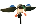 MOJO Mallard Drake Motion Duck Decoy Polymer