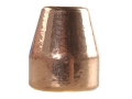 Rainier LeadSafe Bullets 45 Caliber (451 Diameter) 185 Grain Plated Flat Nose