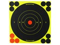 Birchwood Casey Shoot-N-C Target 6&quot; Bullseye Package of 60 with 240 Pasters