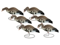 Hard Core Feeder White Front Specklebelly Goose Full Body Decoy Pack of 6