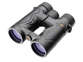 Leupold BX-3 Mojave Binocular 8x 42mm Roof Prism Armored Black with Leupold S4 LockDown X Harness