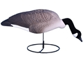 Higdon Super Magnum Full Form Feeder Canada Goose Shell Decoy Pack of 6