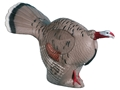 Rinehart Gobbling Turkey 3-D Foam Archery Target