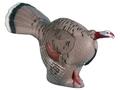 Rinehart Gobbling Turkey 3-D Foam Archery Target