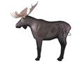 Rinehart Moose Archery Target