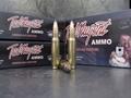Doubletap Ted Nugent Ammunition 308 Winchester 180 Grain Sierra GameKing Box of 20