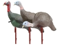 Flambeau Master Series Breeding Flock Turkey Decoy Set