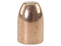 Rainier LeadSafe Bullets 40 S&amp;W, 10mm Auto (400 Diameter) 180 Grain Plated Round Nose Flat Point