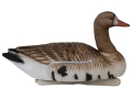 Tanglefree Pro Series Weighted Keel Specklebelly Goose Decoys Pack of 4
