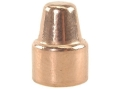 Rainier LeadSafe Bullets 45 Caliber (451 Diameter) 200 Grain Plated Semi-Wadcutter