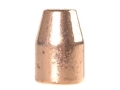 Rainier LeadSafe Bullets 45 Caliber (452 Diameter) 250 Grain Plated Flat Nose