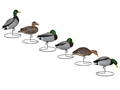 Hard Core Touchdown Duck Full Body Decoy Pack of 6