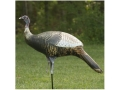 Product detail of Cherokee Sports Submissive Sally Hen Inflatable Turkey Decoy