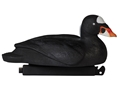 Tanglefree Migration Edition Surf Scoter Duck Decoy Pack of 6