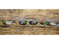 Product detail of GHG Pro-Grade Full Body Mallard Duck Decoys Harvester Pack of 12