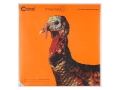 "Product detail of Caldwell Orange Peel Turkey Target 12"" Self-Adhesive Silhouette Package of 5"