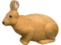 Rinehart Rabbit Artchery Target