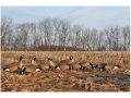 GHG Tim Newbold Signature Series Fully Flocked Lesser Goose Decoys Harvester Pack of 12