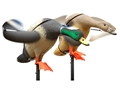 Lucky Duck Lucky Pair Mallard Motion Duck Decoy Combo