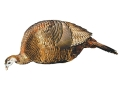 Montana Decoy Feeder Hen Turkey Decoy Cotton, Polyester and Steel