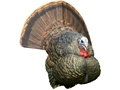 Product detail of Avian-X LCD Strutter Inflatable Turkey Decoy