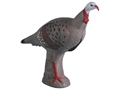 Product detail of Rinehart Alert Turkey 3-D Foam Archery Target