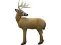 Rinehart Lookback Buck 3D Archery Target