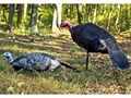 Montana Decoy Purr-Fect Pair Turkey Decoy Combo Cotton, Polyester and Steel