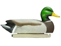Tanglefree Pro Series Duck Decoy Weighted Keel Super Magnum Mallard Duck Decoy Pack of 6